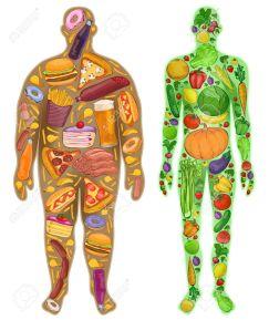 50549801-mensch-dünn-dick-ernährung-lebensmittel-neu-illustration